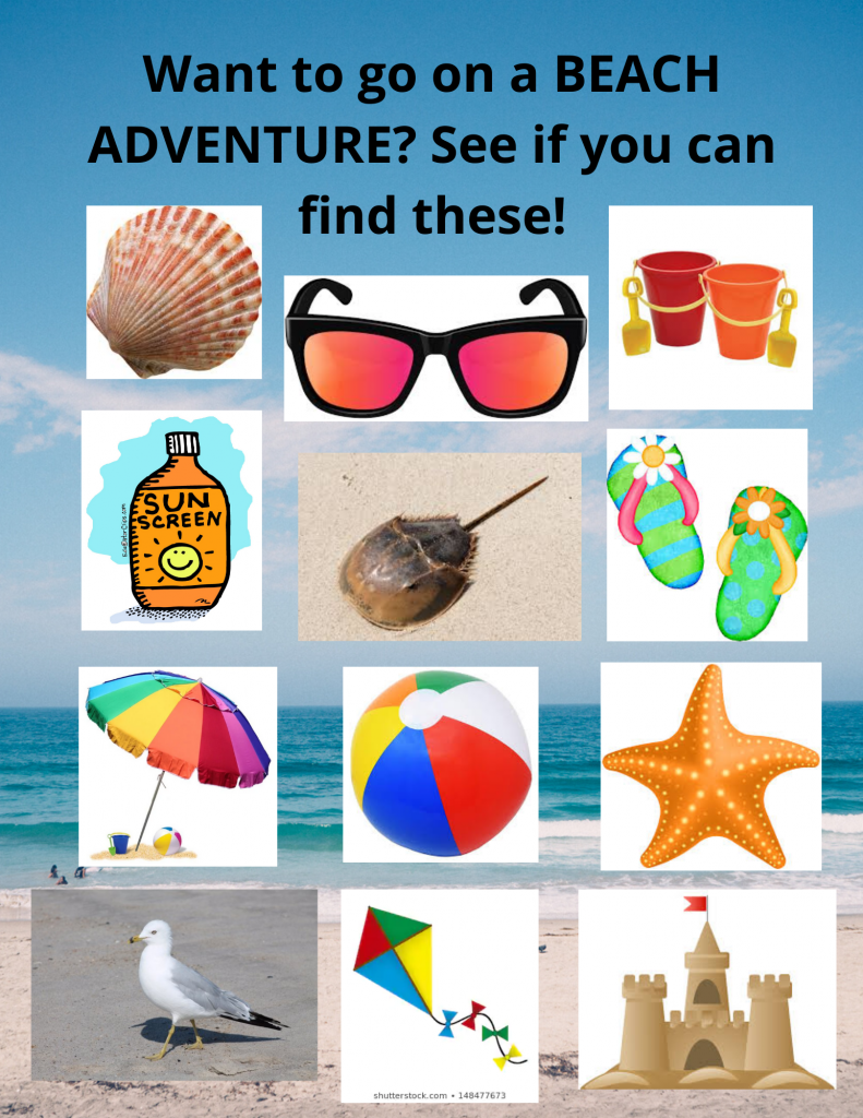 Want to go on a BEACH ADVENTURE_ See if you can find these!
